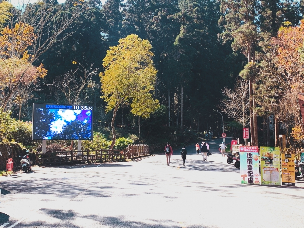 NTU expermental forest-P6 Outdoor LED Video Wall